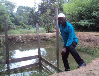 Cameroon : Retired agric engineer wins best fish farm award